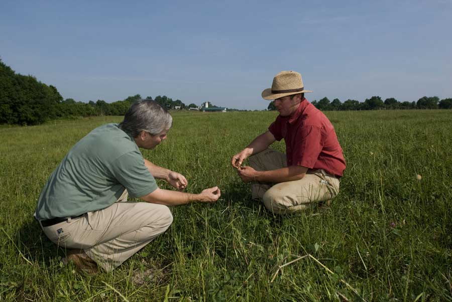 """This summer's forage conference approaches weed control in pastures and hay fields from an integrated approach,"" said Chris Teutsch, associate professor of crop and soil environmental sciences at Virginia Tech's Southern Piedmont Agricultural Research and Extension Center."