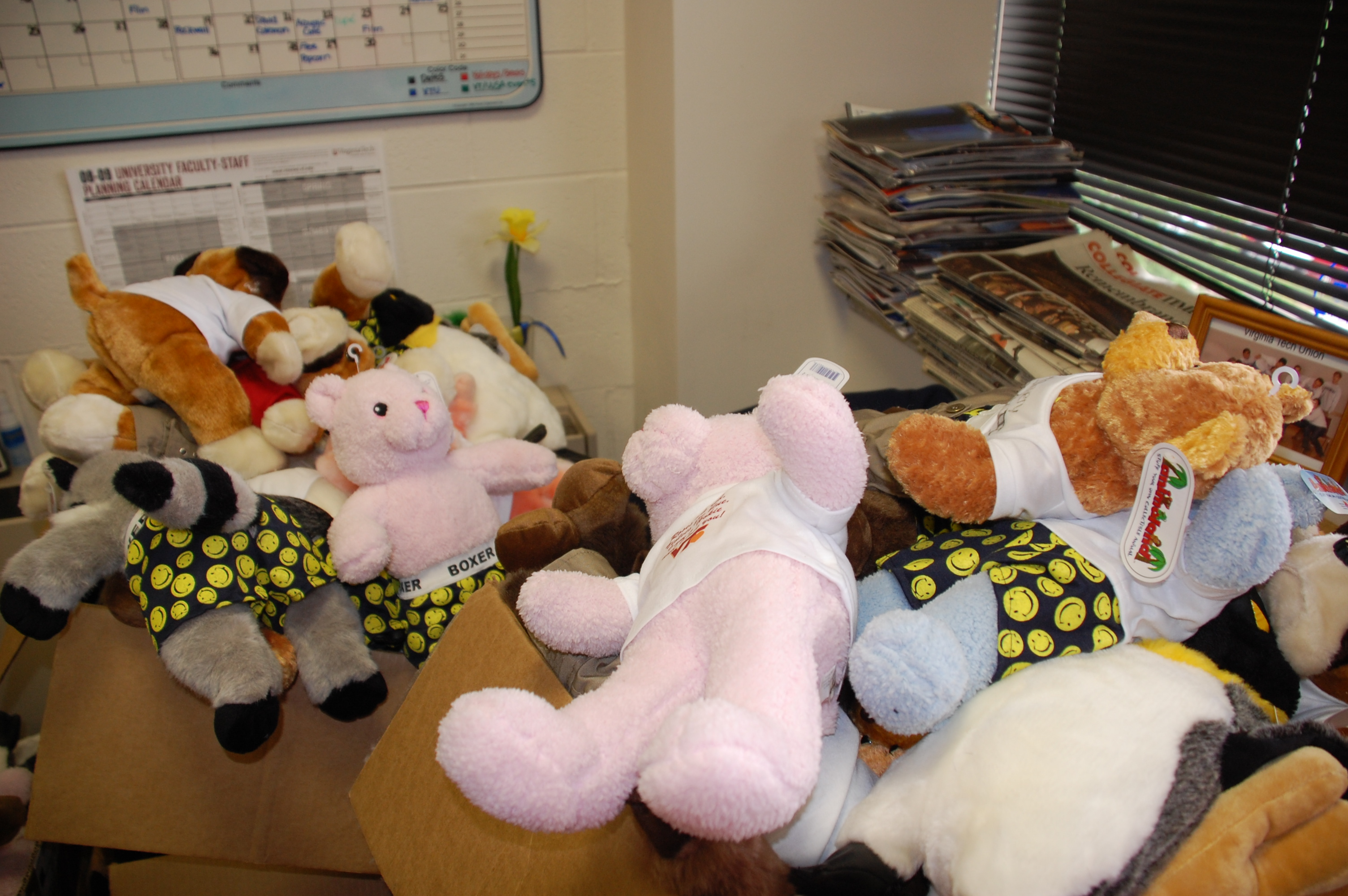 More than 125 stuffed animals are on their way to new homes, thanks to the Virginia Tech Union and NRV Cares.