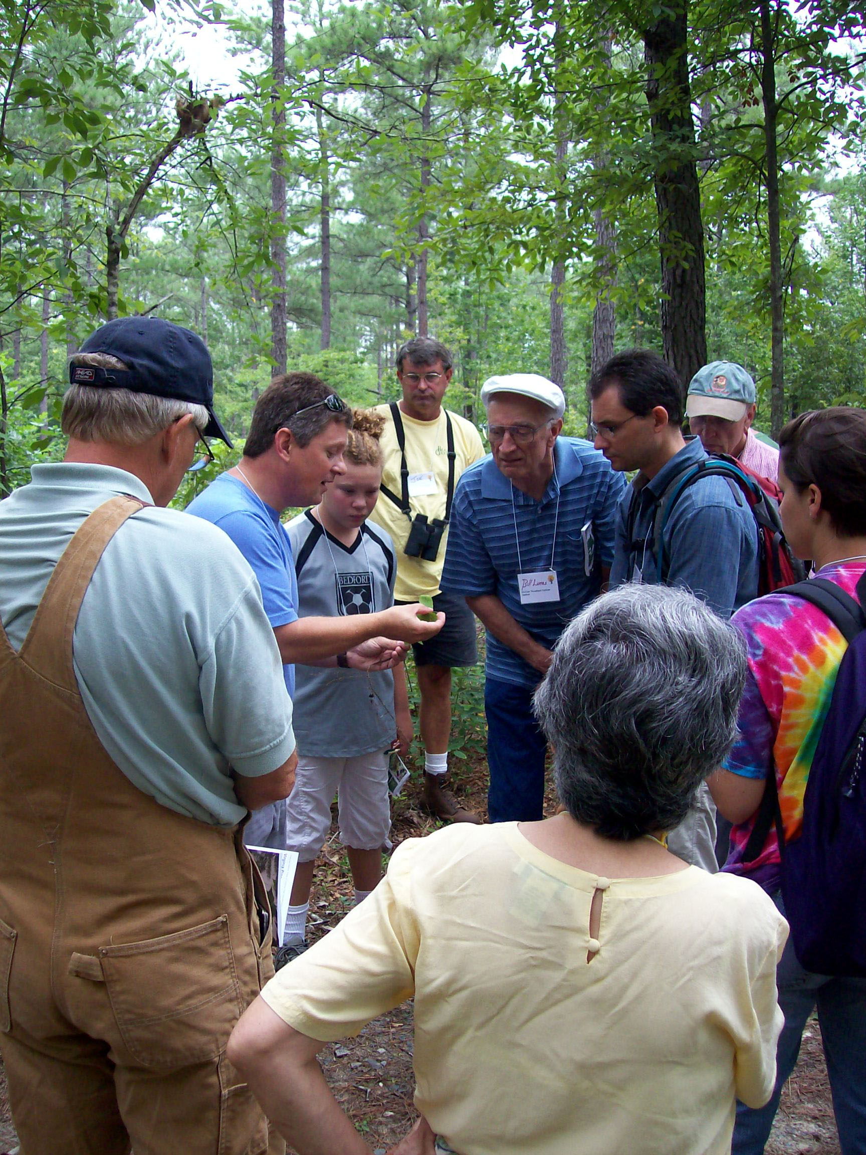 "Participants learn how to identify common Virginia tree species during the 2009 ""On-Line Woodland Options for Landowners"" course's optional field trip."