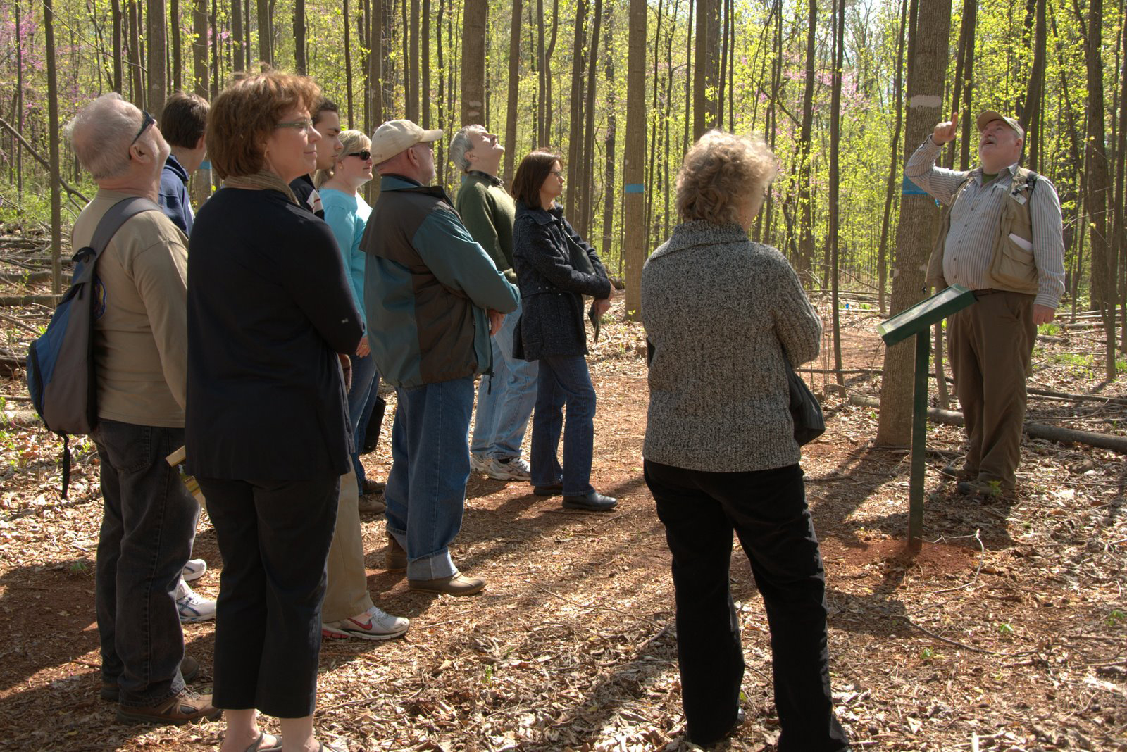 A group of people standing next to an interpretive sign in the woods.
