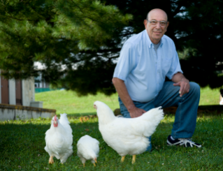 About 10 years ago, Virginia Tech researchers intercrossed the high- and low-growth lines to determine which traits remained in the gene pool and which did not as a result of Paul Siegel's 40 years of breeding high-growth and low-growth lines of chickens. This third line has aided researchers in understanding the underlying process that takes place during selection for growth.