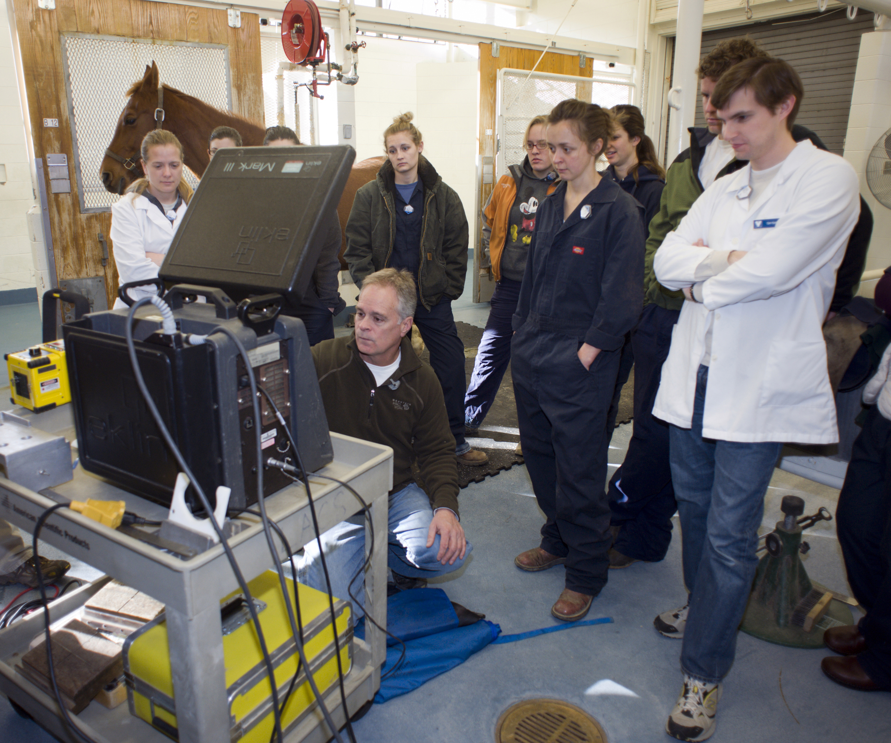 Members of the Equine Field Service team use the latest technology in diagnosis and treatment of horses.
