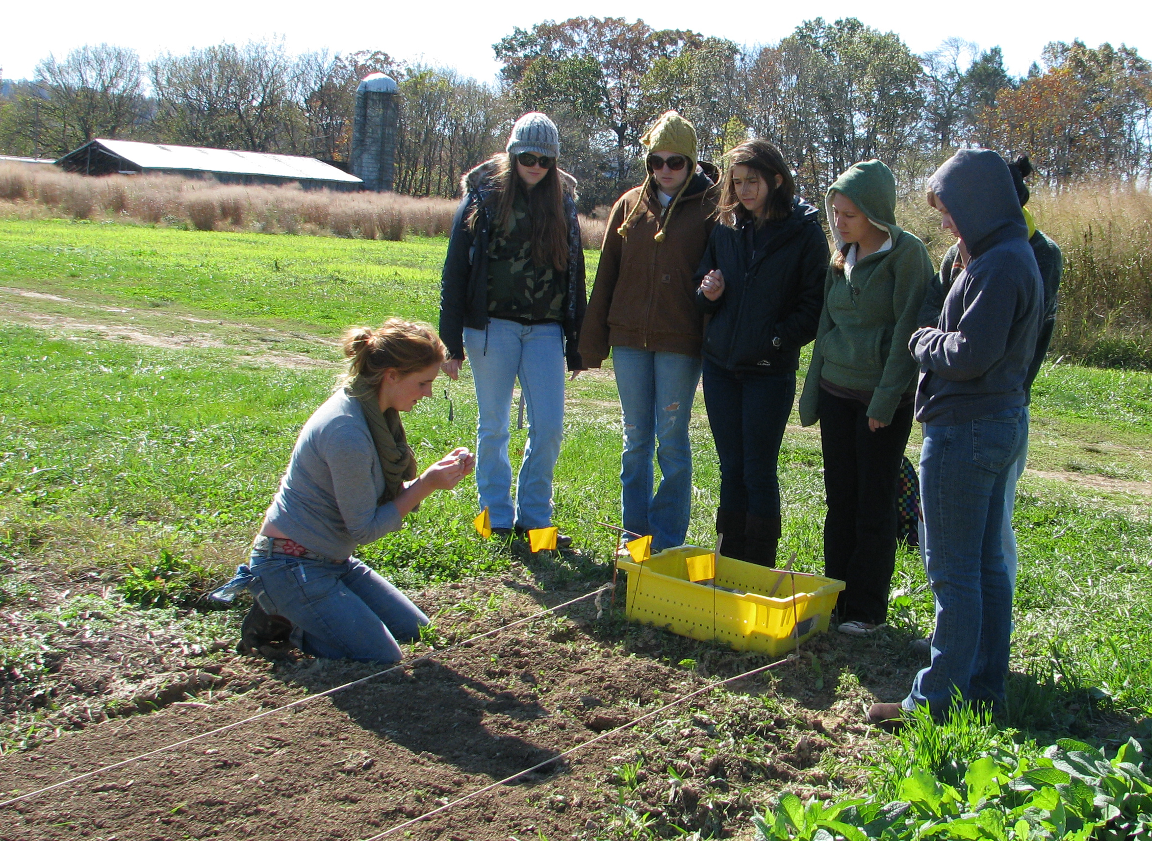 Farm manager Chelsea Graves teaches student volunteers how to plant garlic at the Dining Services Garden at Kentland Farm. Garden products provide a source of fresh, local ingredients to serve in the campus dining centers.