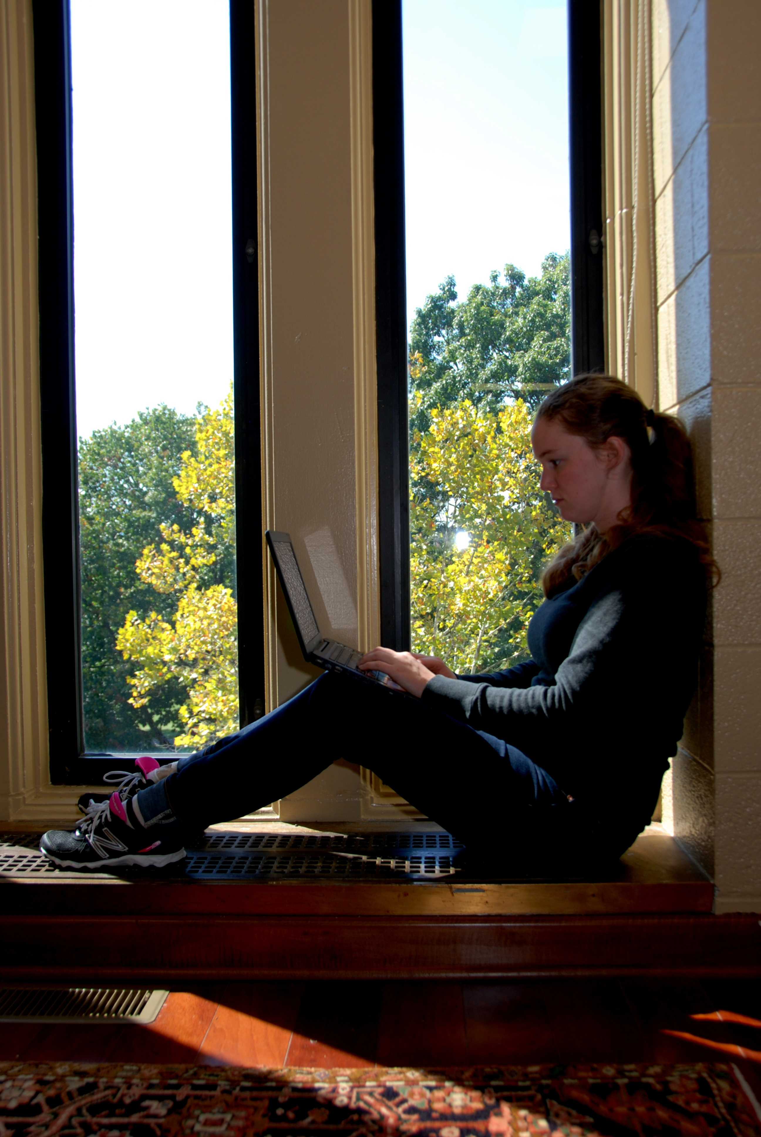 A student works on a laptop in Newman Library.