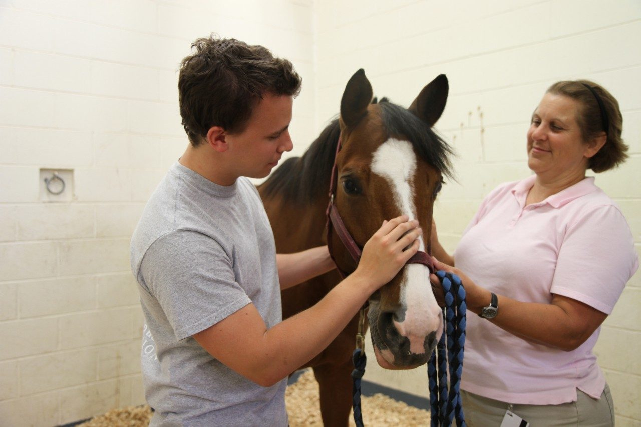Daniel Inman (left) and Dr. Linda Dahlgren visit Mollie the horse, a patient at the Virginia-Maryland Regional College of Veterinary Medicine.