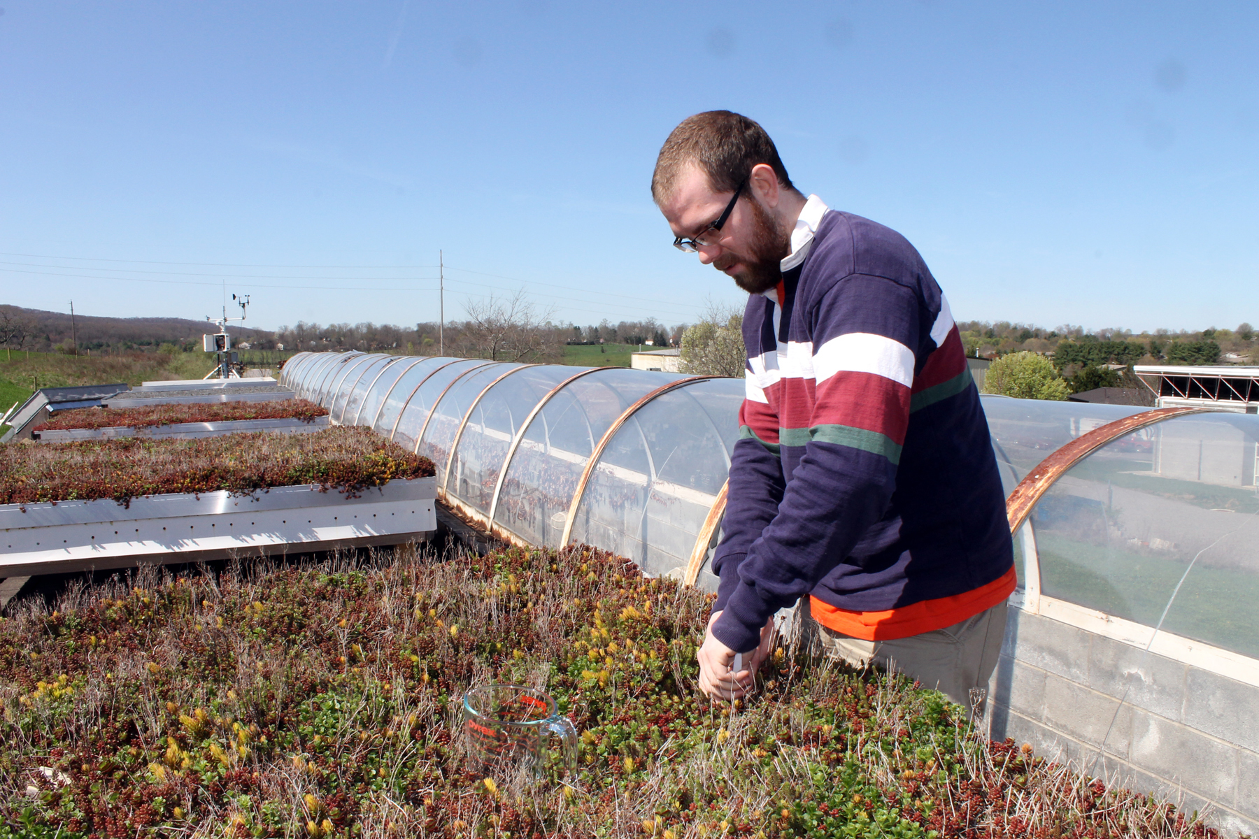 Taking soil samples from green roof modules