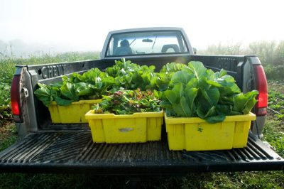 A truck carries Kentland Farm produce.