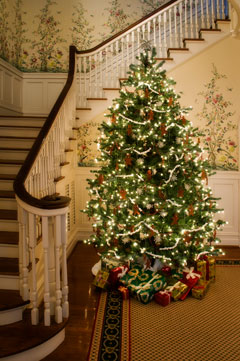 A decorated Christmas tree stands in a house.