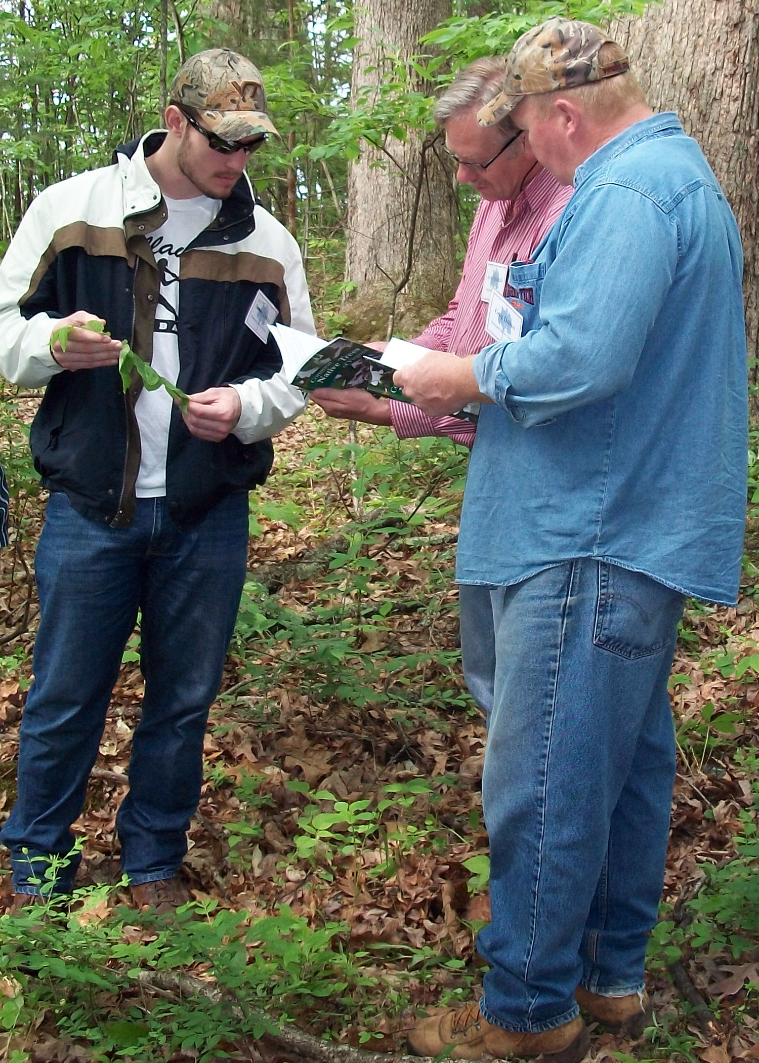 Three people standing in a wooded setting. One holds a booklet; another holds a leaf.