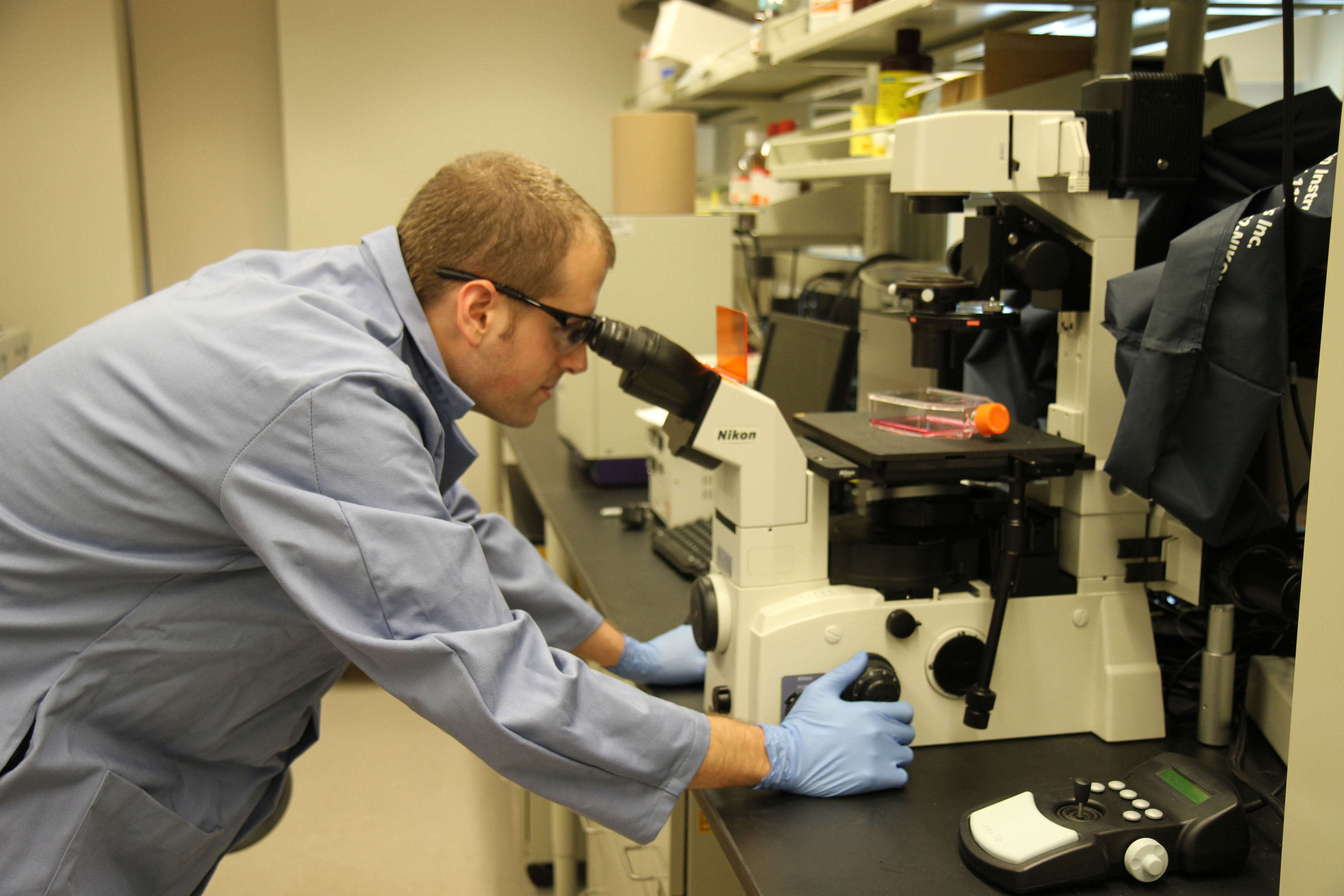 Sean Hemp actively grows HeLa cell cultures in Timothy E. Long's lab.