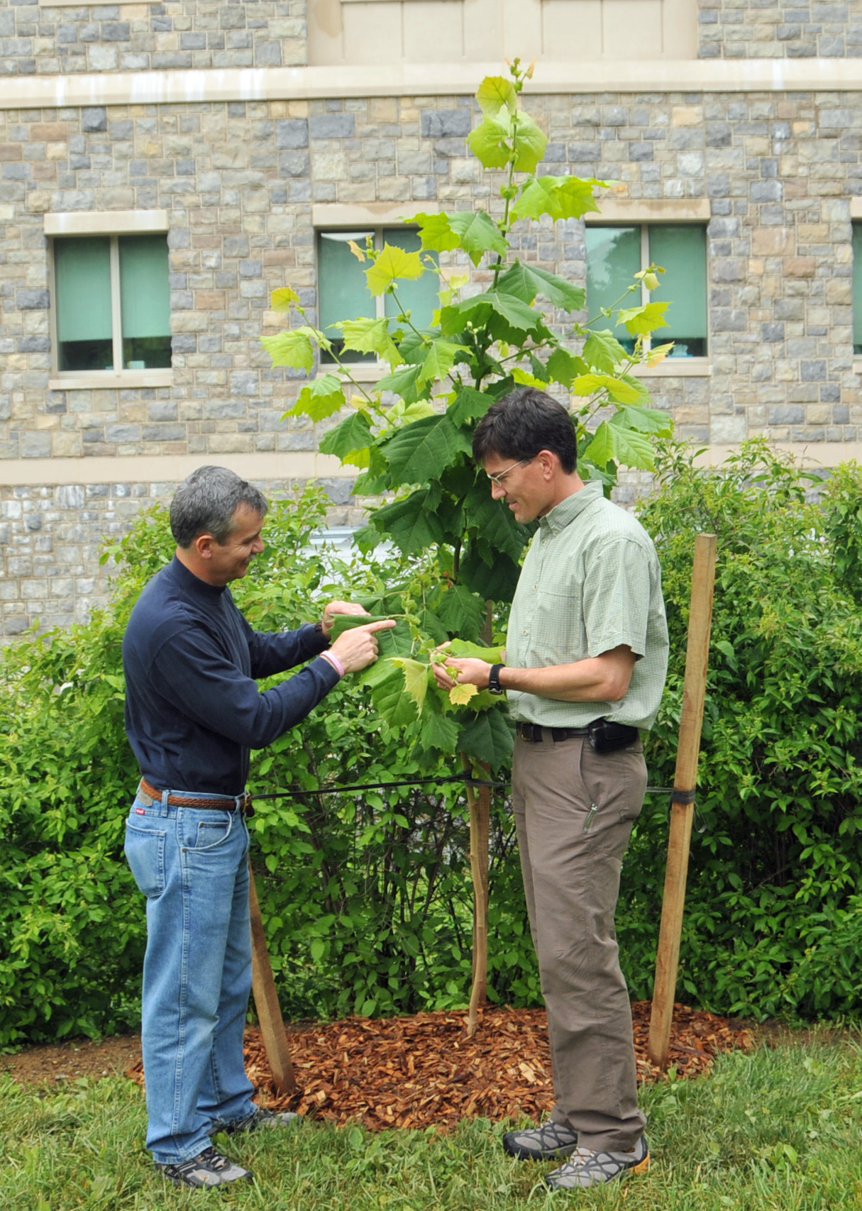 John Seiler and Eric Wiseman standing next to a small tree.
