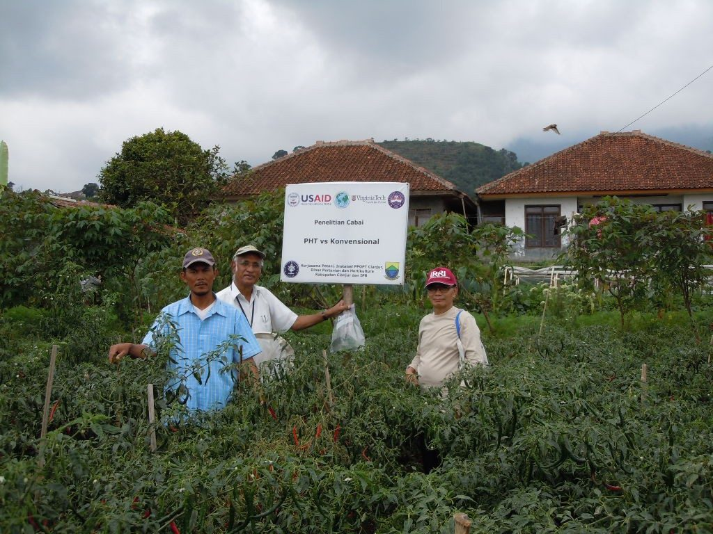 "Rangaswamy ""Muni"" Muniappan, Integrated Pest Management Innovation Lab director (center), stands in a hot pepper trial field in Puncak, West Java, Indonesia, with program collaborators Aunu Rauf (right) of Bogor Agricultural University in Indonesia and Pak Ujang (left), a farmer. Photo courtesy of Muni Muniappan."