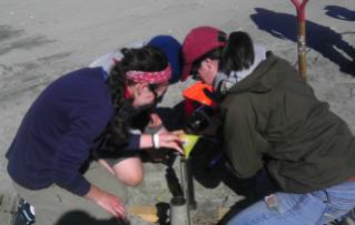 Emily Ronis (left), an undergraduate researcher at Virginia Tech, works with Ruici Ong, an undergraduate researcher at Duke University, and Zoe Carroll, another undergraduate researcher at Virginia Tech, to learn how to use a cannon net for capturing birds.