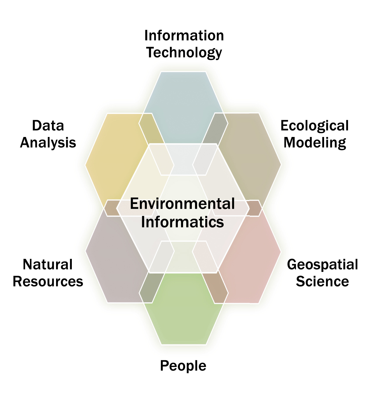 A graphic with environmental informatics at the center, surrounded by information technology, ecological modeling, geospatial science, people, natural resources, and data analysis.