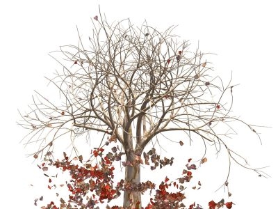A screen shot of a computer animated tree with falling red and brown leaves on a white background.