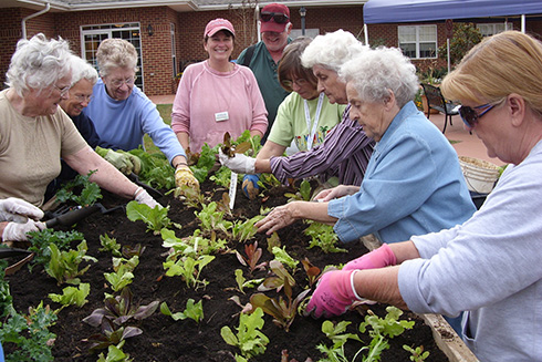 Seniors plant a spring garden in a raised bed.