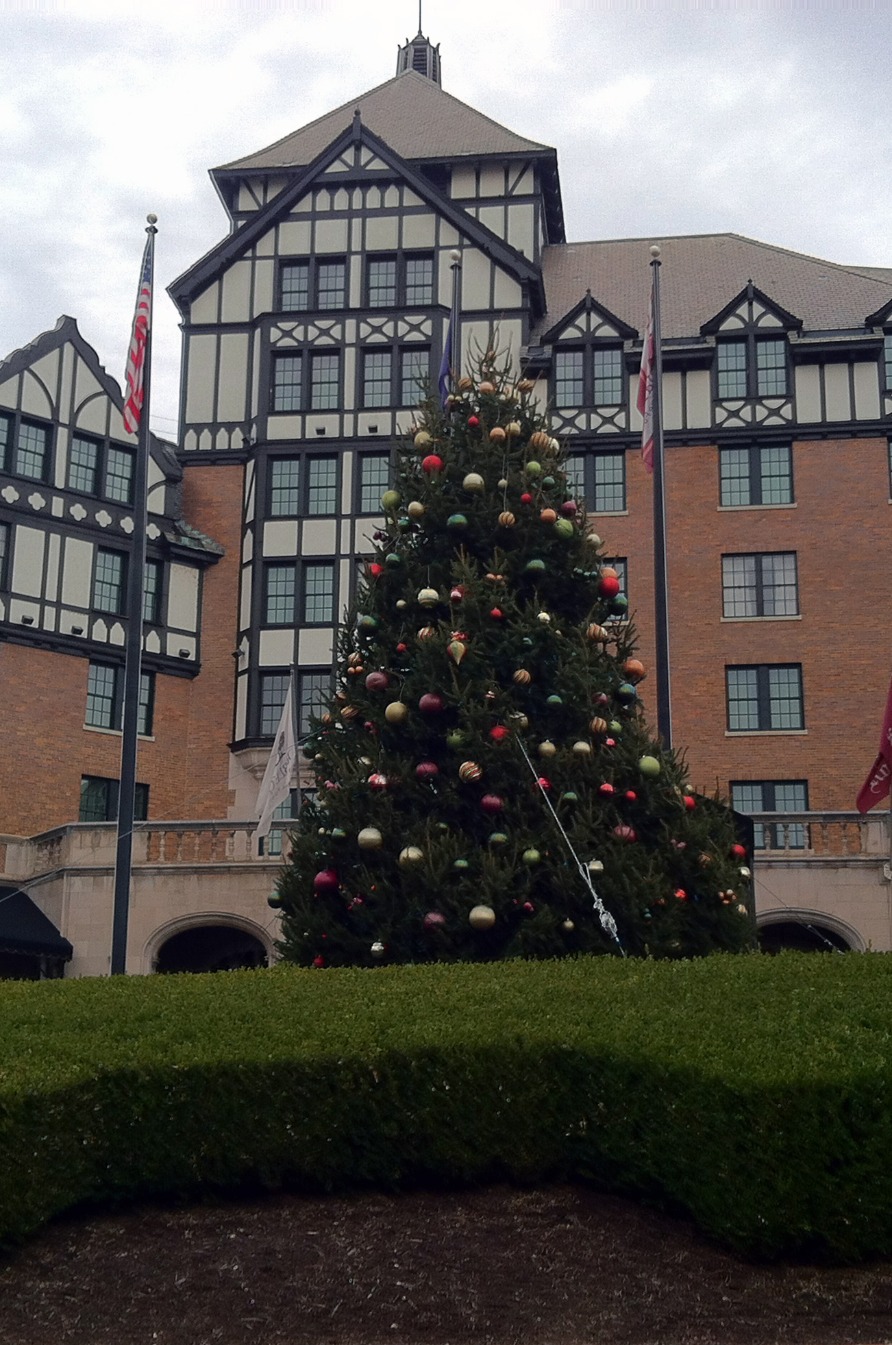 A decorated tree is displayed outside the hotel.