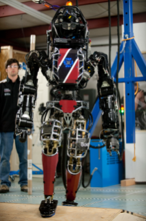 This Boston Dynamics-built robot has been renamed Florian, or FLOR for short, by the Virginia-Germany Interdisciplinary Robotics team participating in the Defense Advanced Research Projects Agency's Robotics Challenge.