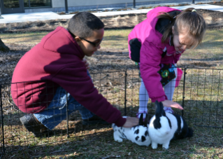 Live bunnies, courtesy of Field of Daisies Rabbit Rescue, will be at this year's event.