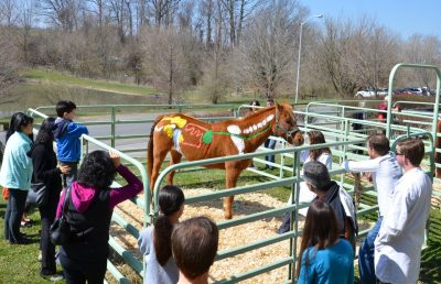 Painted horse demonstration at Open House