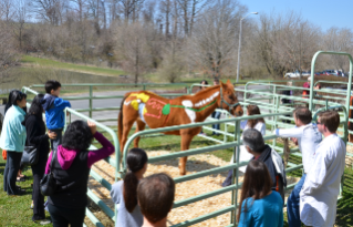 A painted horse demonstration teaches children about equine anatomy at last year's Open House.