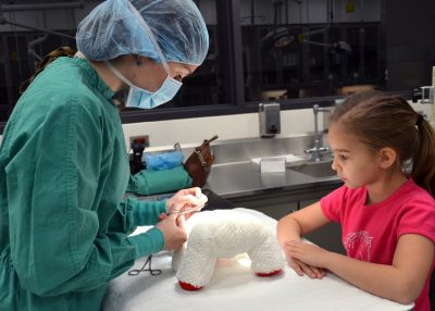 Teddy Bear Repair Clinic at the Annual Open House