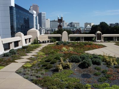 Atlanta green roof