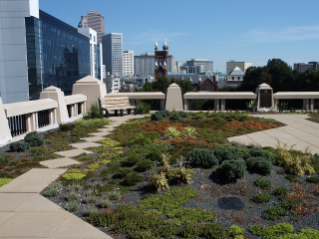 The green roof atop Atlanta City Hall offers an amenity to city residents while also providing stormwater runoff reduction benefits.