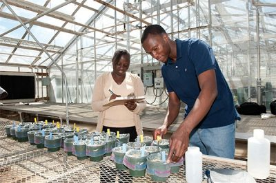 Senegalese graduate students in the Virginia Tech College of Agriculture and Life Sciences