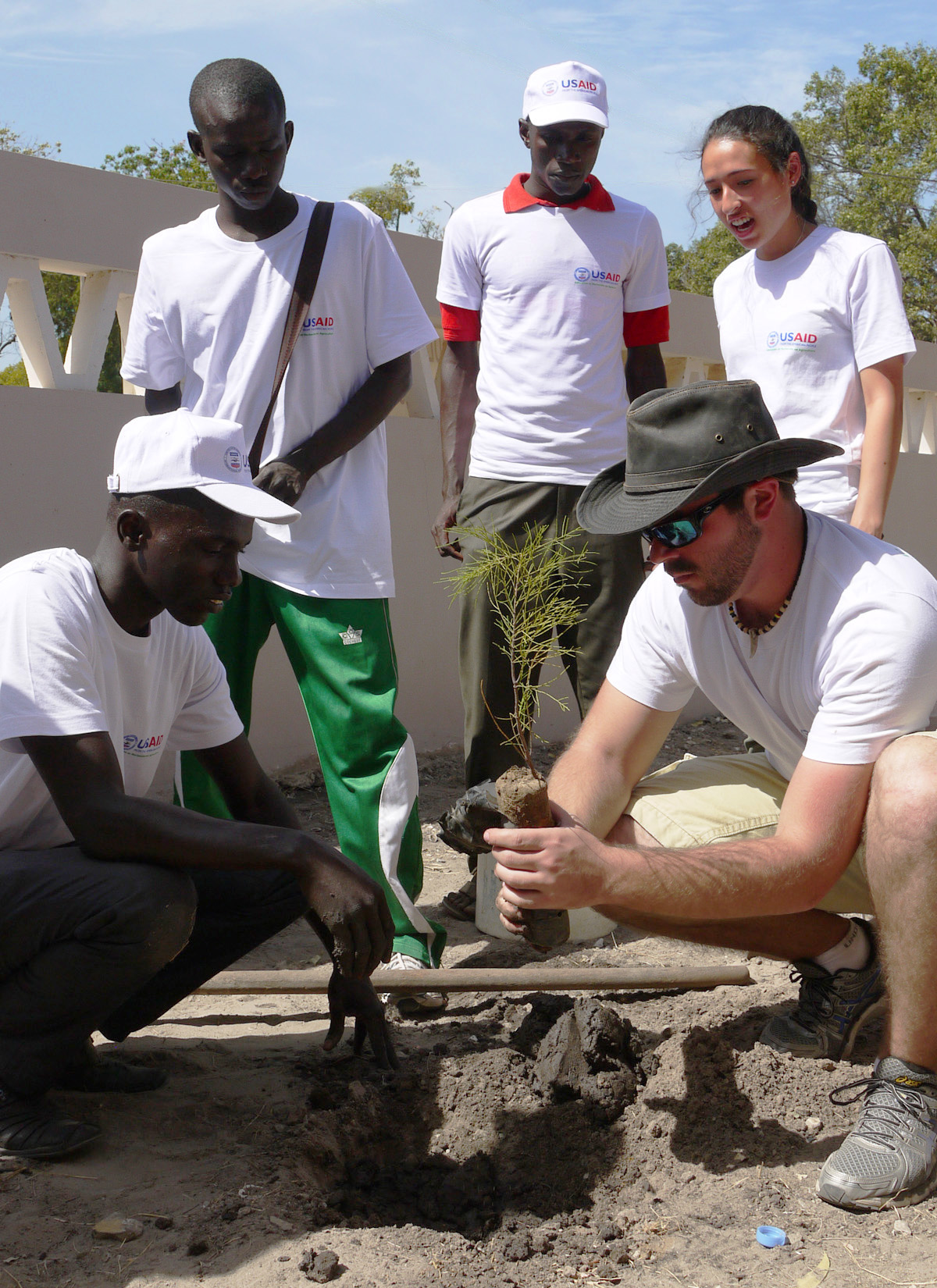students help plant tree in Senegal