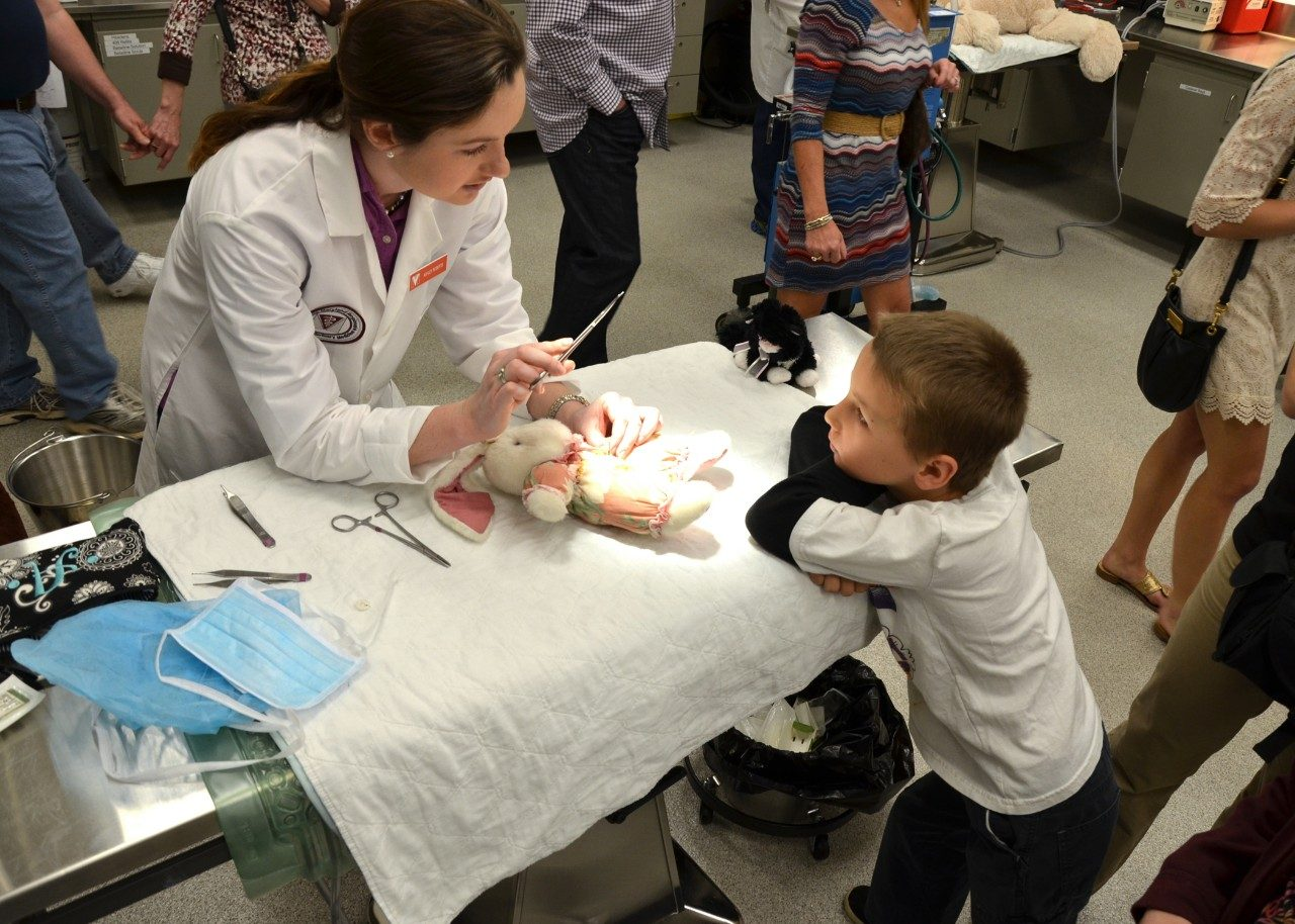 "A veterinary student ""surgically"" repairs a stuffed animal at last year's Teddy Bear Repair Clinic."
