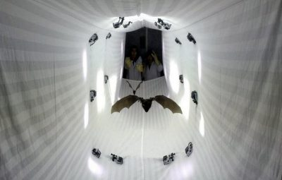 Bats flying through a tunnel