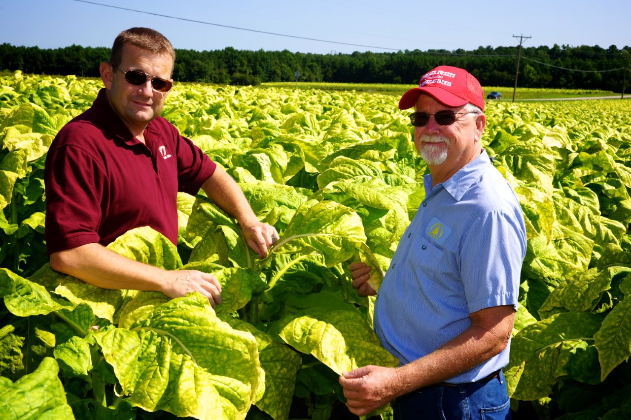 Mike Parrish and Swisher Sunbelt Farmer of the Year Don Turner in a tobacco field.