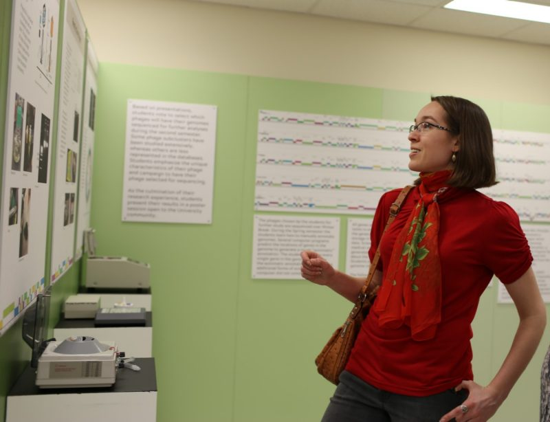 Visitors learn about phage hunting from the exhibit