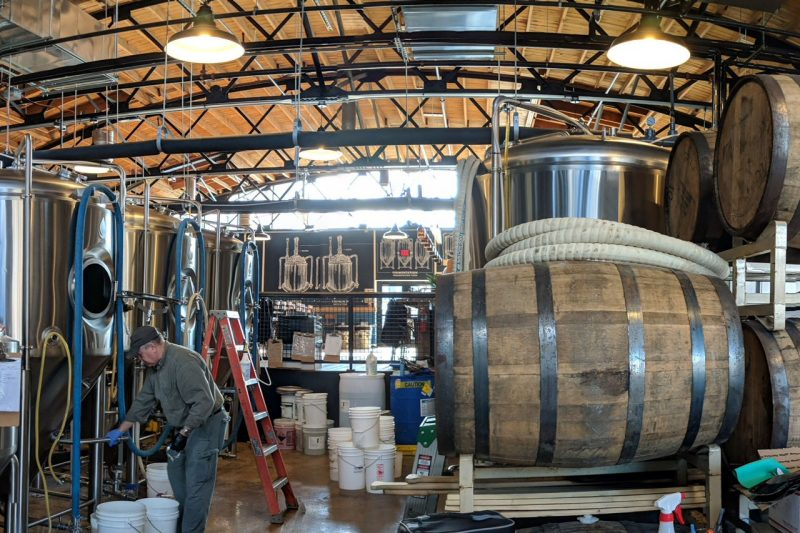 A man works in a brewery next to giant wooden kegs.