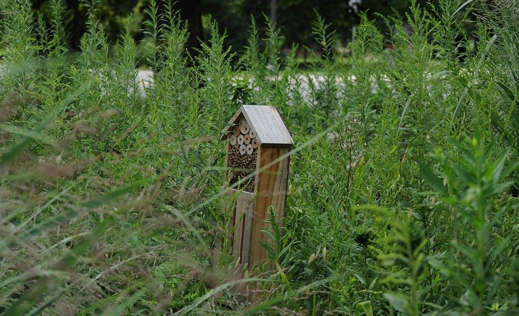 Bee hotel implemented through the Green RFP program.