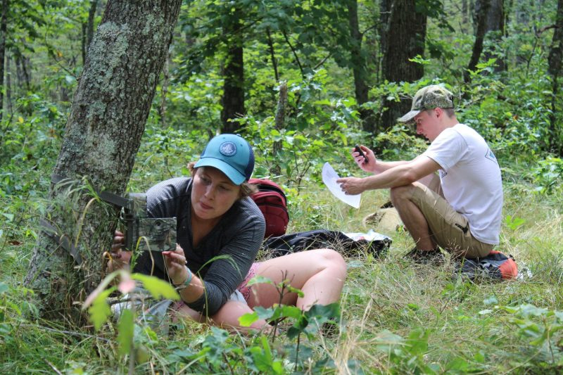 Students spent 10 days in the outdoors for a Wildlife Field Techniques course.
