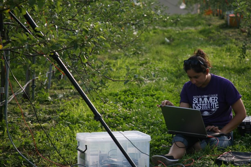 Briana Posadas, pictured conducting hyperspectral research in 2019, joined the Department of Agricultural, Community, and Leadership Education in September 2020 as a prestigious 2020 Computing Innovation Fellow.