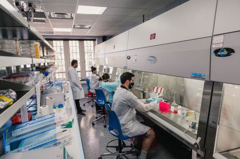 Biomedical engineering majors working in a lab to grow, freeze, and/or thaw cells during the fall semester 2020