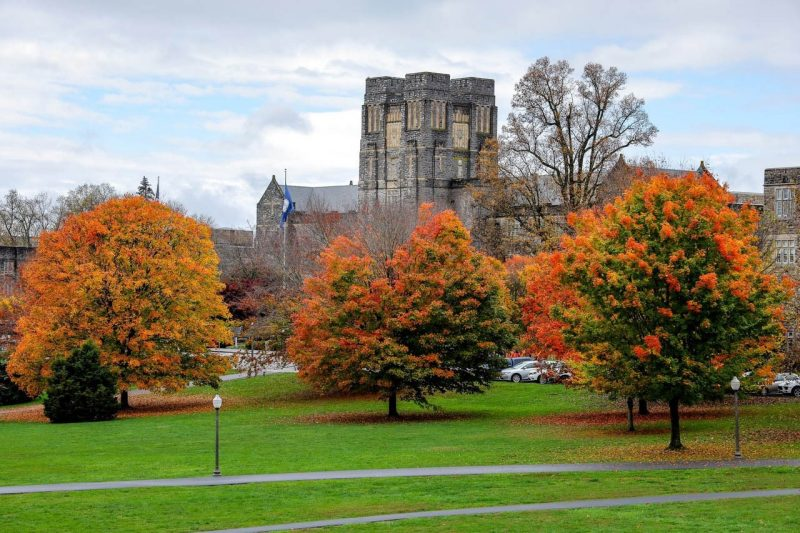 photo of campus in the fall.
