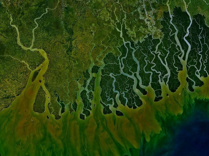 Satellite image of the Ganges River Delta.