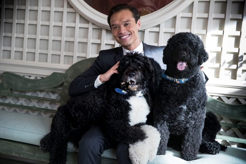 Peter Velz with two medium sized dogs