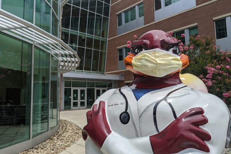 Medical school HokieBird with mask outside VTCSOM building