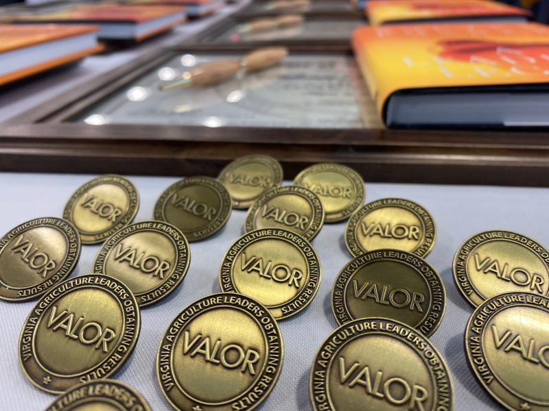 Lapel pins and certificates to commemorate VALOR program graduation.