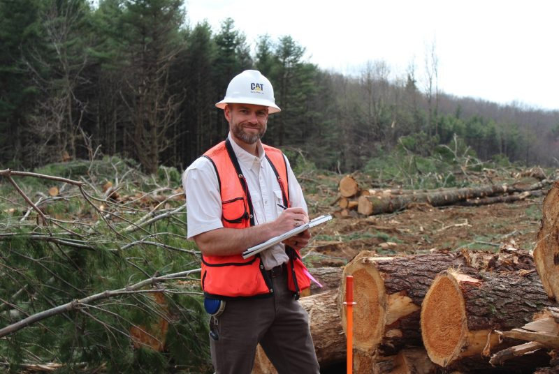 A man wearing a hard hat and a reflective vest and holding a clipboard stands in front of cut logs and branches in a forest clearing