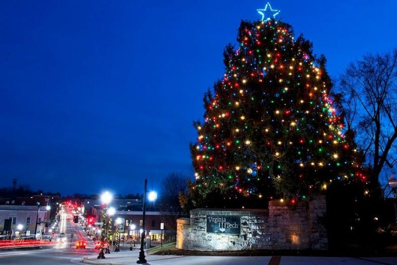 Photo of Blacksburg tree.